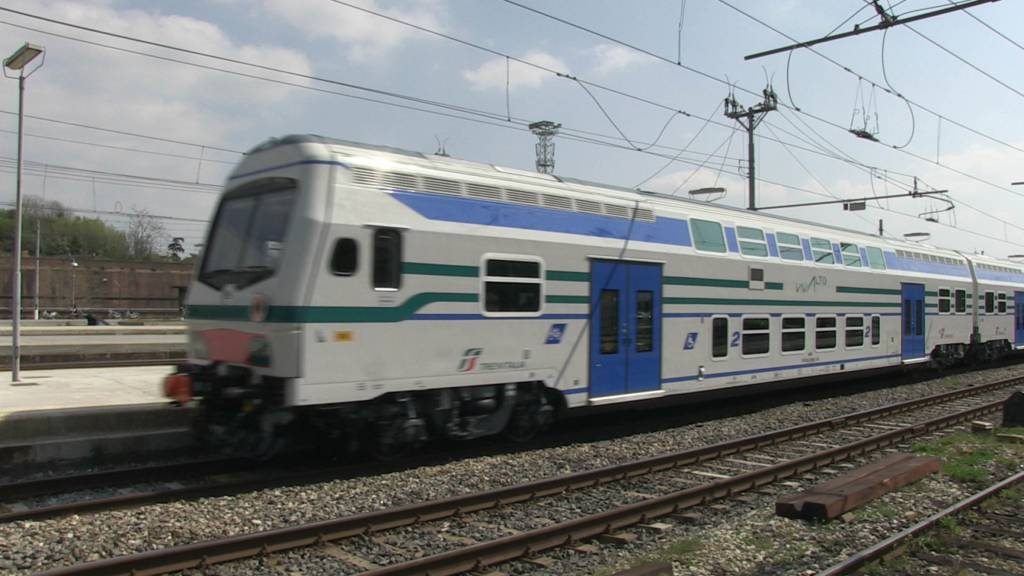 treno-svedese-Belluno-disabile