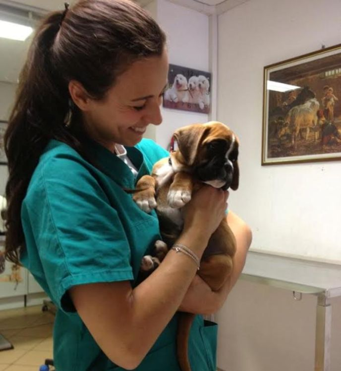 pet therapy-disabili-cani