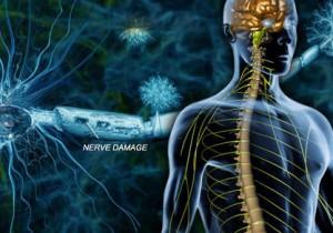 sclerosi-multipla-usala-contact