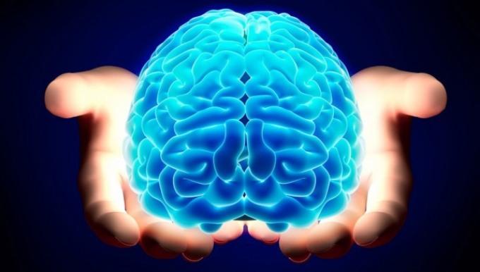 midollo-cervello-contact-usala