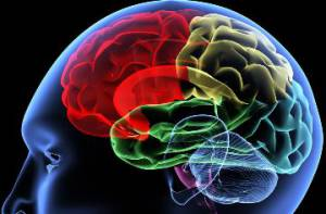 sclerosi-multipla-empatia-usala