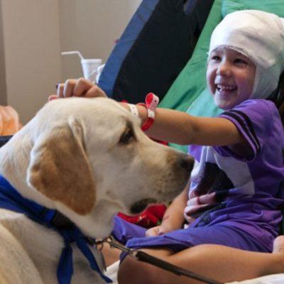 Una bambina in ospedale con il suo cane: esempio di Pet Therapy