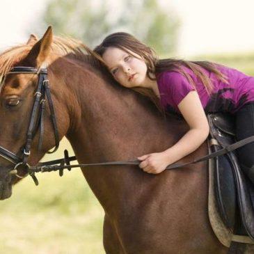 Il cavallo per l'ippoterapia